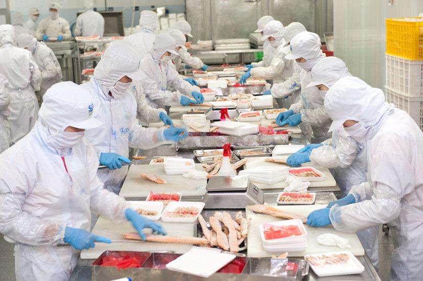 [Nhật Bản] tuyển gấp 10 nữ chế biến thủy sản lương 30 triệu